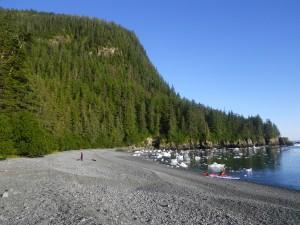 Valdez 2010 154